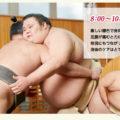 女性ファンが多い千代丸は四つ相撲でも強い
