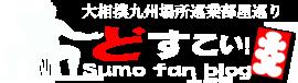 どすこい!相撲ファンブログ